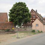 Schnepfenreuth-6